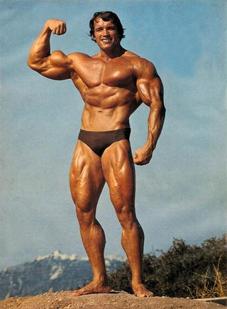 arnold swarzenneger steroid cycle